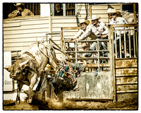 Lions Club Rodeo